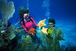 Diving tours in Egypt the best vacation 1