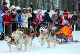Skijoring competition held at the Hippodrome Barnaul