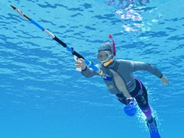 Spearfishing - cure for autumn depression