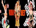 Как играть в игровые автоматы казино WinBet
